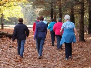ouderen wandelen(1)